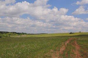 Холмистый пейзаж с зеленью и облаками в районе известнякового карьера у д. Мокино