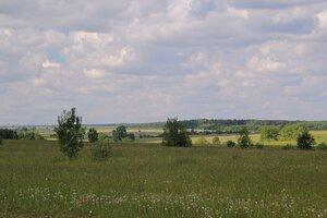 Пейзаж с зеленью и облаками в районе известнякового карьера у д. Мокино