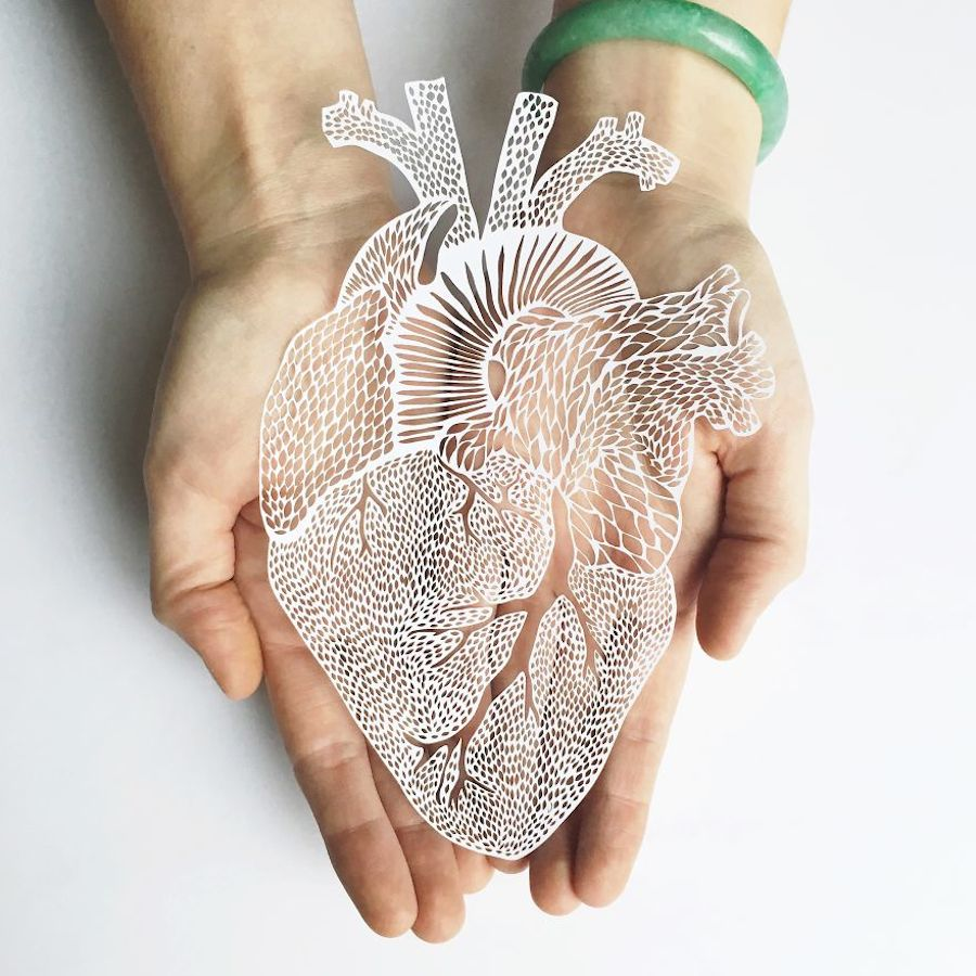 Incredibly Accurate Papercuts of Organs