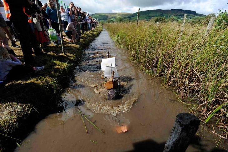 Каждый год в маленьком британском городке Ллануртид Уэльс в Уэльсе собирается свыше 100 участников,