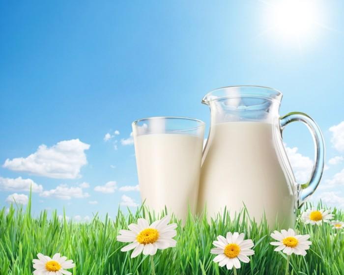 5. Молоко Тем, кто желает естественным образом наладить свой сон, поможет молоко, в котором содержит