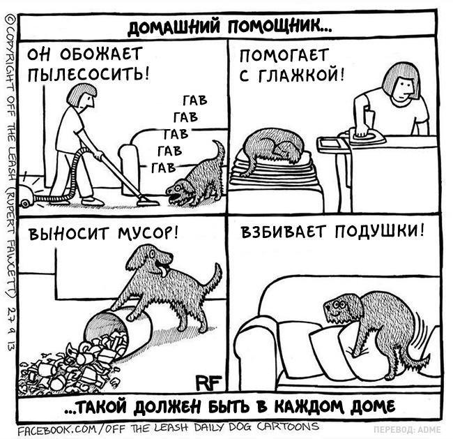 Вся правда ожизни ссобакой