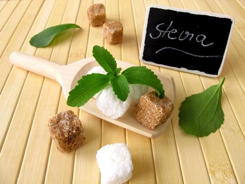 Стевия и кусочки сахара