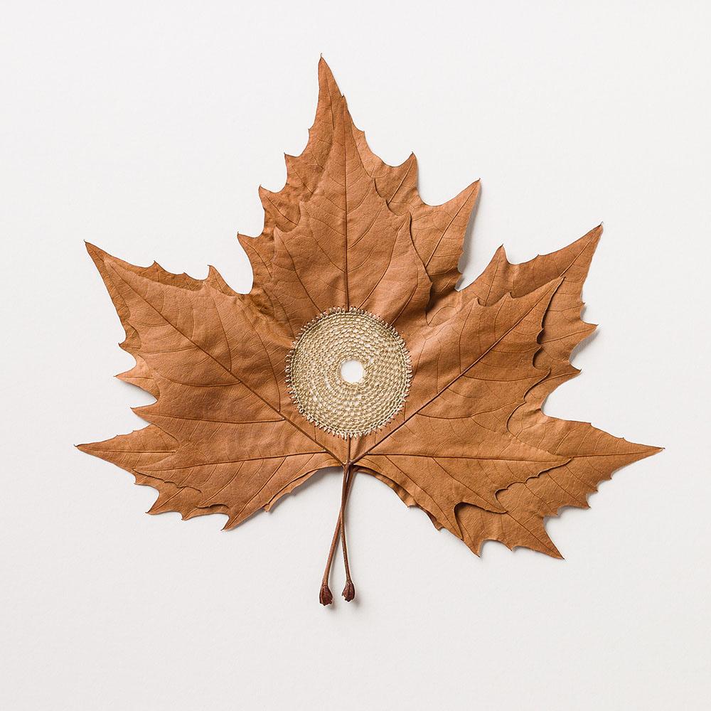 Centered. 38 H x 38 W cm. Platanus leaves, cotton yarn.