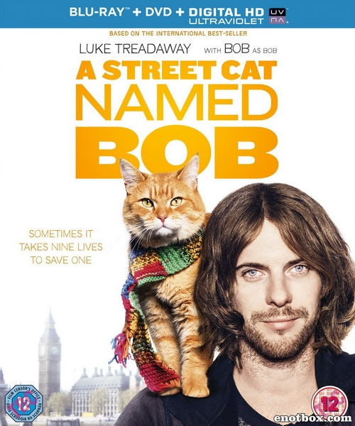 Уличный кот по кличке Боб / A Street Cat Named Bob (2016/BDRip/HDRip)