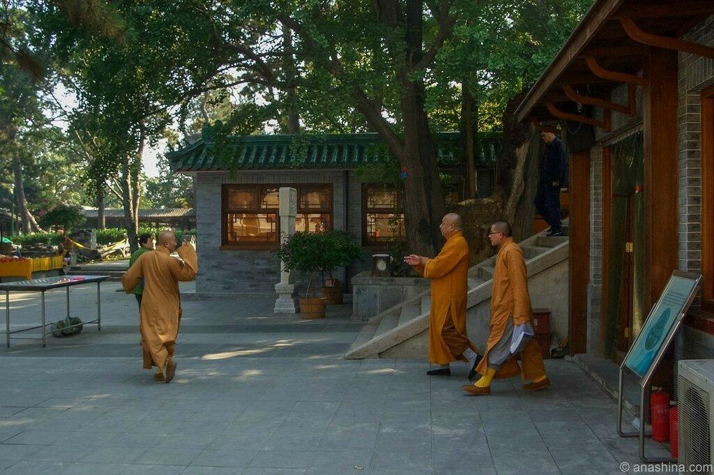 Монахи, монастырь Лингуан, Бадачу
