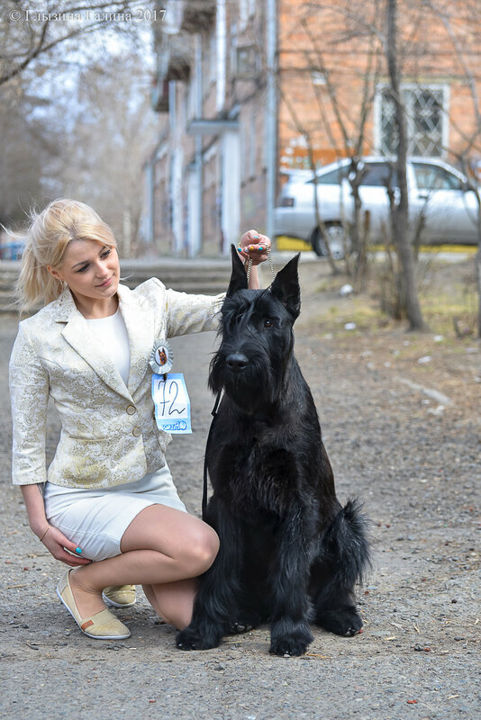 https://img-fotki.yandex.ru/get/58717/5306260.e2/0_1921f5_72e4f517_XL.jpg