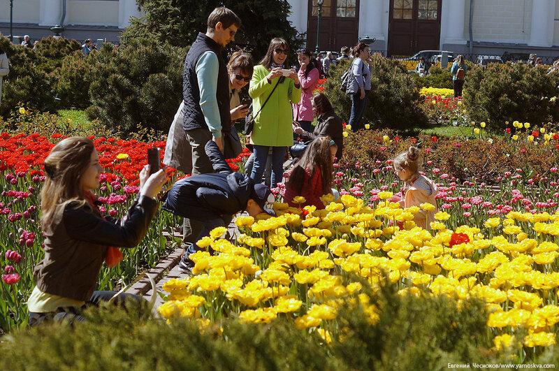 49. Александровский сад. 14.05.17.08..jpg