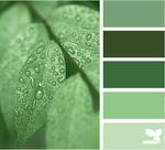 green-tones.png