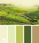 wall-colors-hobbit-273x300.jpg