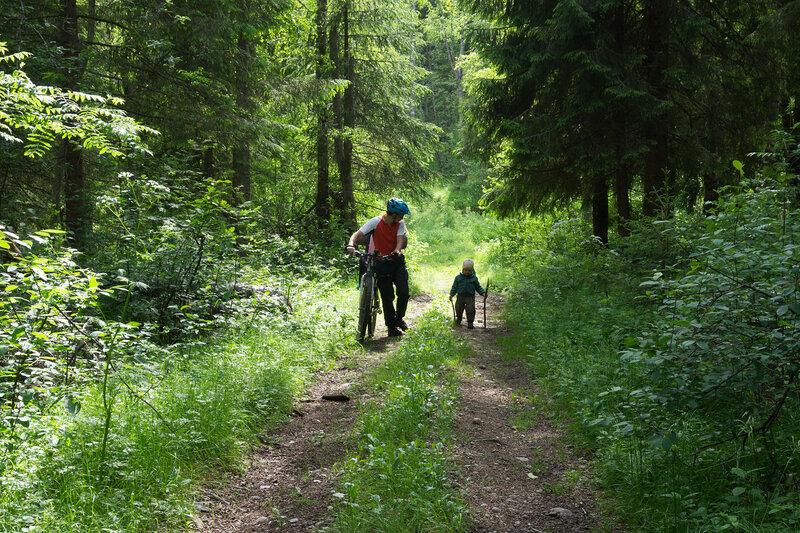 папа велосипедист и ребенок идут по лесу