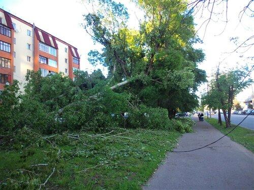 Последствия урагана 29 мая 2017 в Москве