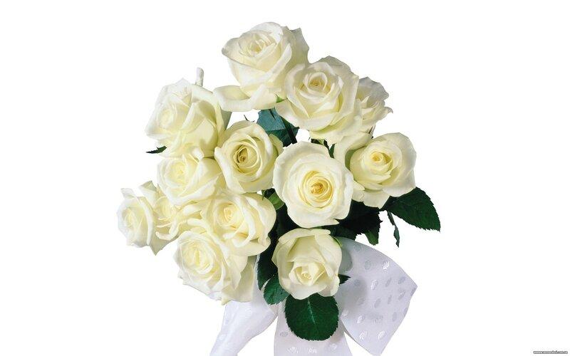 Для того, чтобы установить картинку или обои Белые розы фото на
