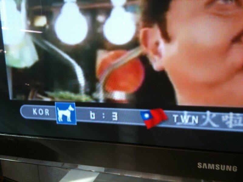 Собачка вместо флага Кореи