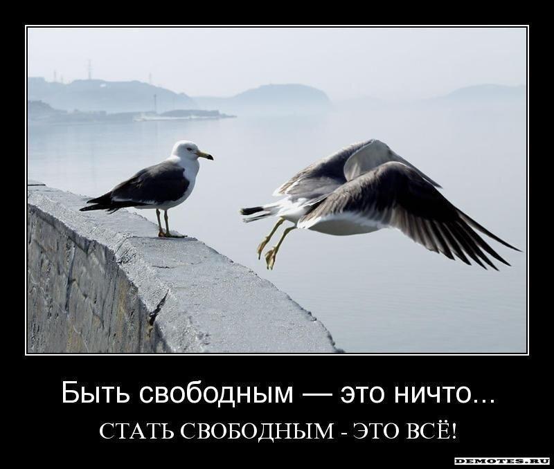 http://img-fotki.yandex.ru/get/5900/posmetnaia-el.c8/0_479b1_a7367ab5_XL.jpg