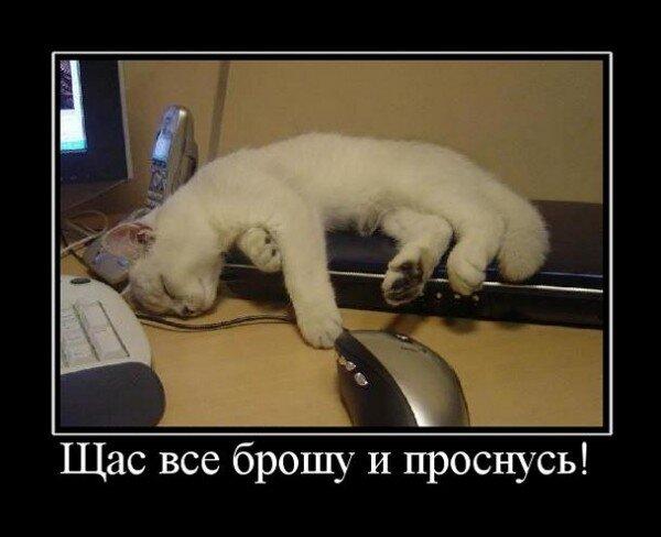 http://img-fotki.yandex.ru/get/5900/posmetnaia-el.c8/0_479b7_e79d28_XL.jpg