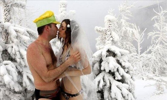 свадьба моржей
