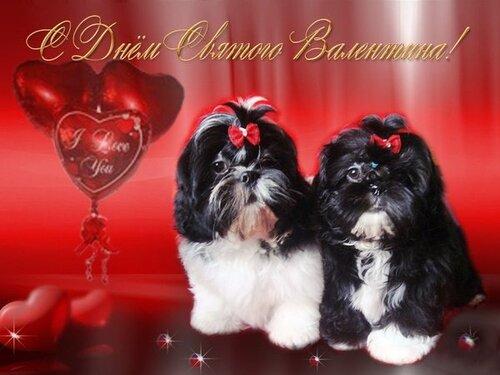 Валентинки(открытки) 105