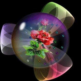 цветы(анимация)61