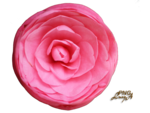 Camellia pink.png