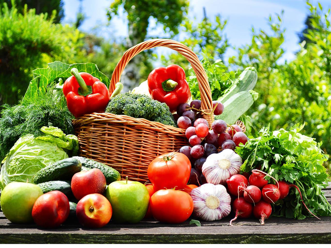 Овощи и фрукты - лучшая еда!