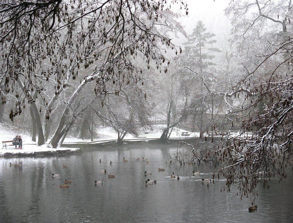 Мишкольц, Общественный парк (Közpark)