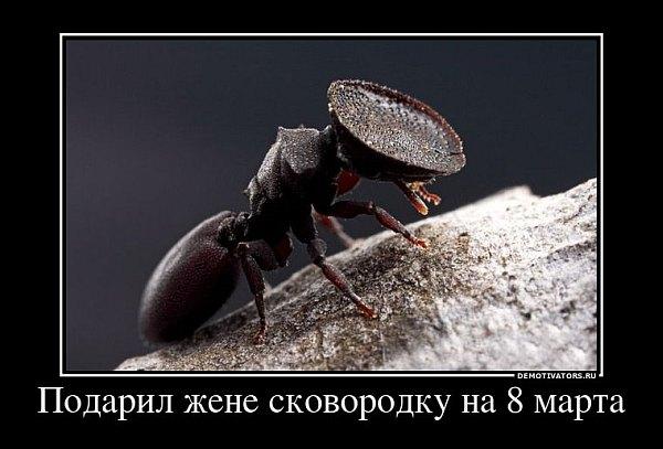 Телефонный Справочник Компаний Москвы