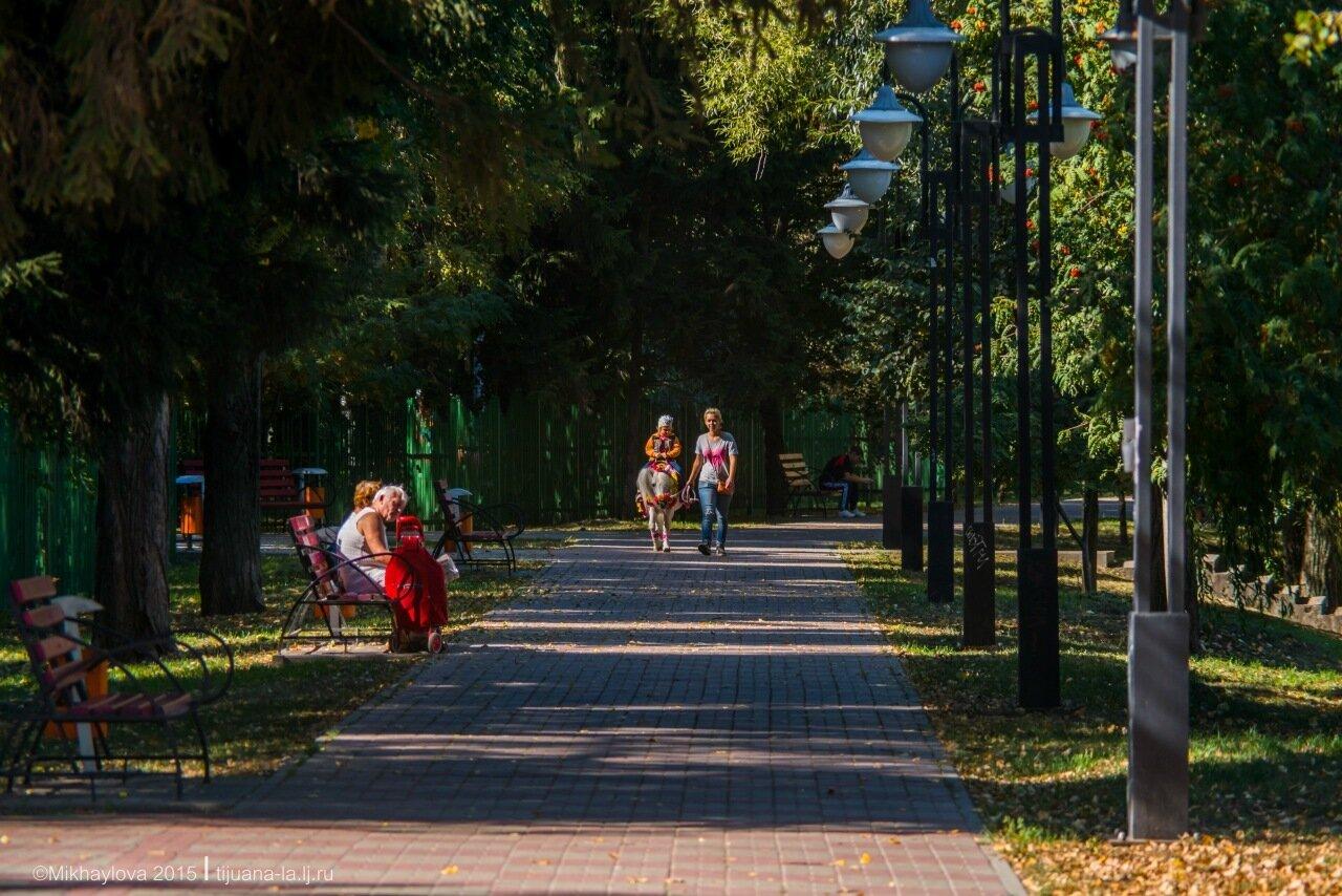 Осень в городе