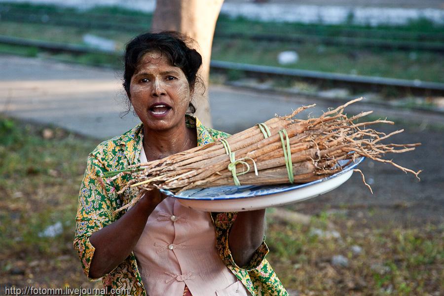 Burmese women — img 13