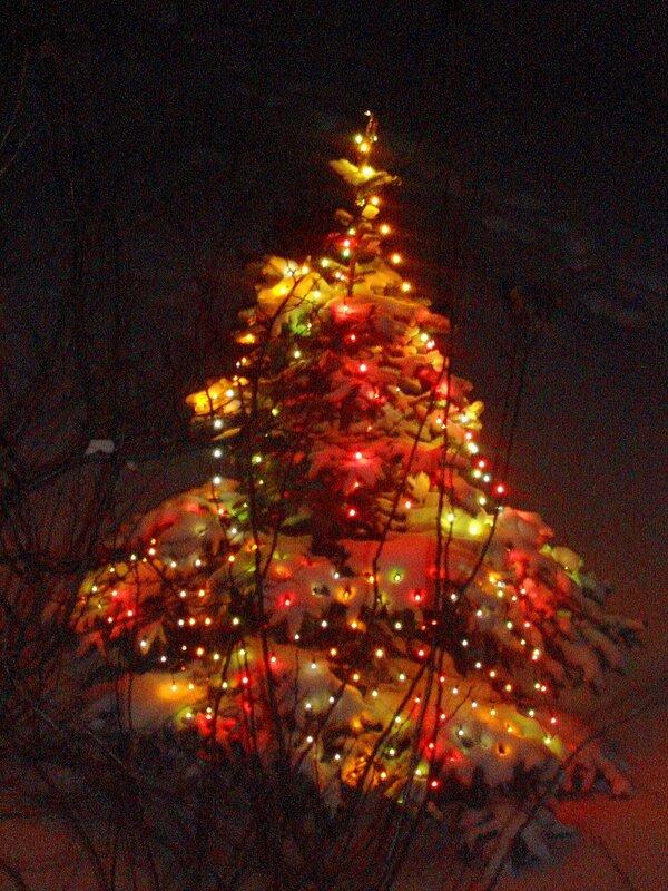 Зима,с.Остров,подворье,Рождество
