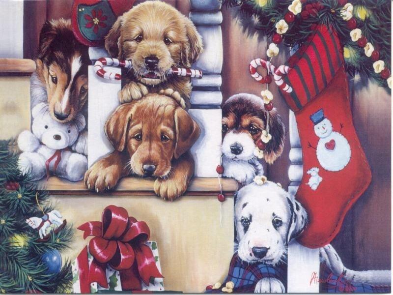 с рождеством, рождество, смс, смски на рождество , sms, смс на рождество, смсмки, эсэмэски на рождество, рождественские смсски, смс поздравления с рождеством, 7 января, с 7 января, поздравления с рождеством христовым в стихах, статусы и цитаты с рождеством