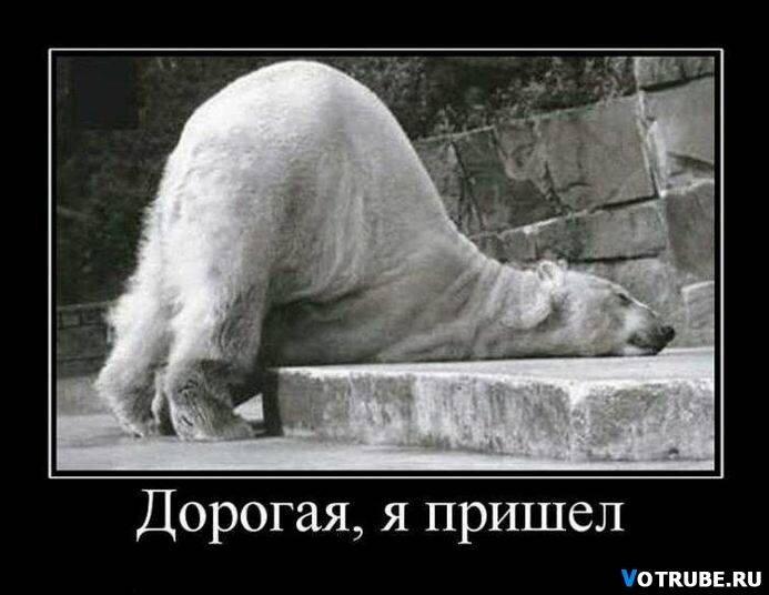 http://img-fotki.yandex.ru/get/5901/posmetnaia-el.dd/0_4d32f_c8048873_XL.jpg