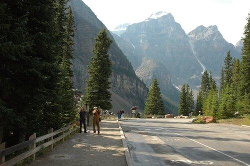 Скалистые горы Канады в еловом обрамлении.