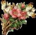 Rose Victorienne(элементы)  5