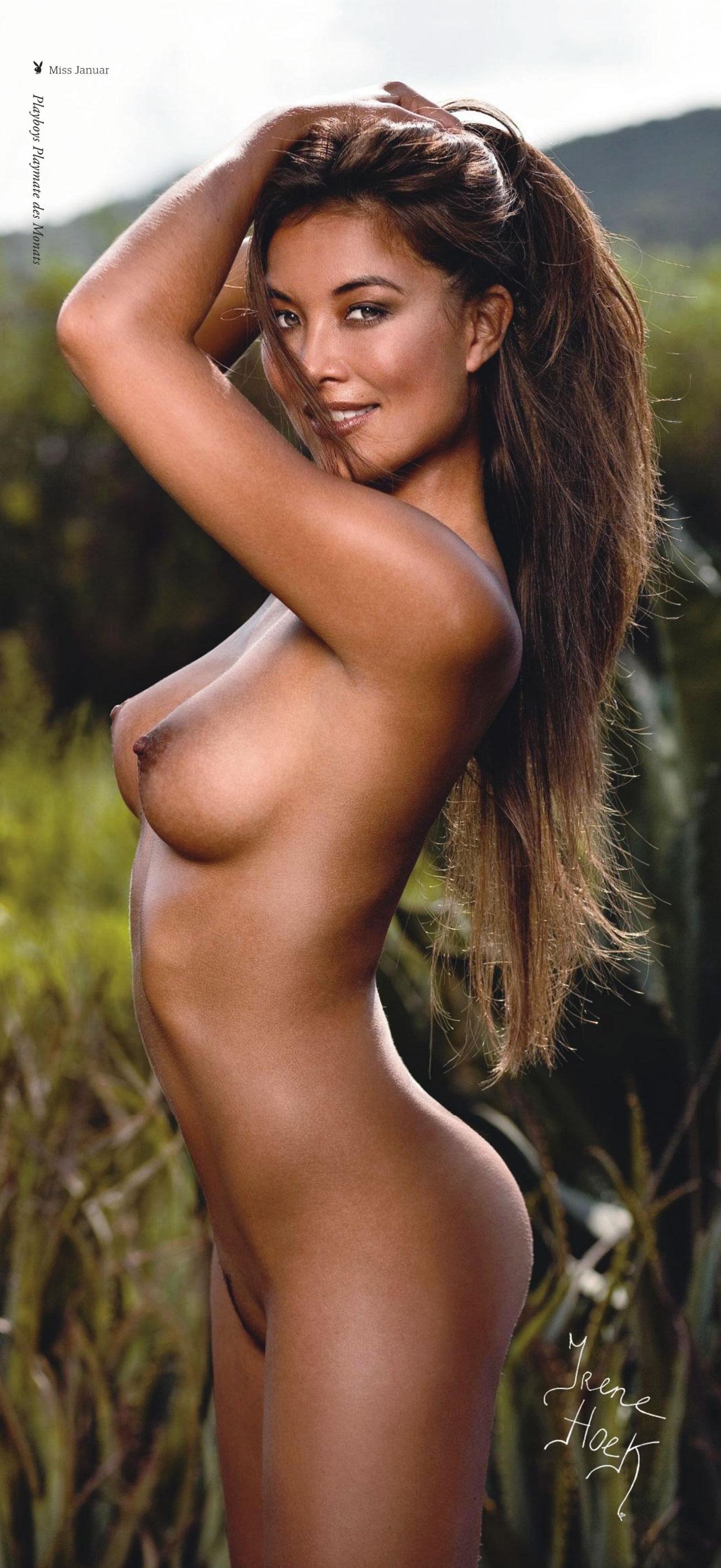 Ирене Хоек / Irene Hoek in Playboy Germany january 2011 - большой постер 1277х2777