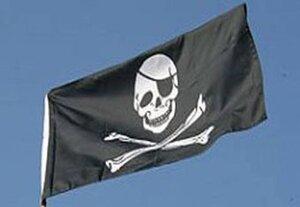 Дальневосточный профсоюз моряков начал неделю борьбы с «удобными флагами»