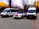 аренда автобусов на свадьбу в Перми. т. 8(342)271-51-55 Андрей. www.vip159.ru