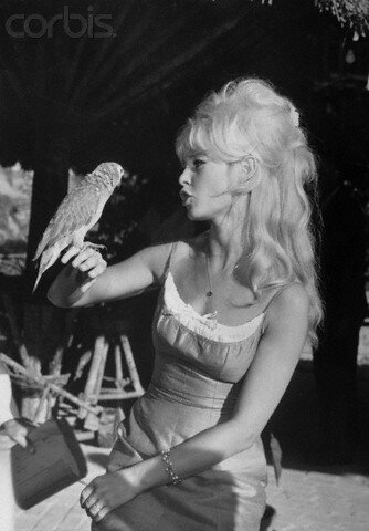 Brigitte Bardot Talking to Parrot