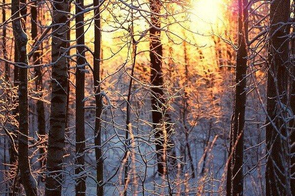 Фотограф Денис Куликов