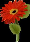 цветы-(260).png