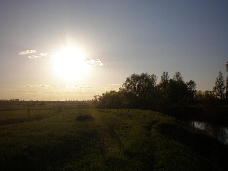 закат над малахитовым лугом