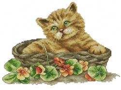 Kotek w koszyczku (Kram z robotkami)