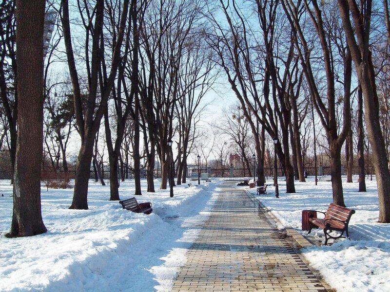 Аллея Мариинского парка перед стадионом Динамо
