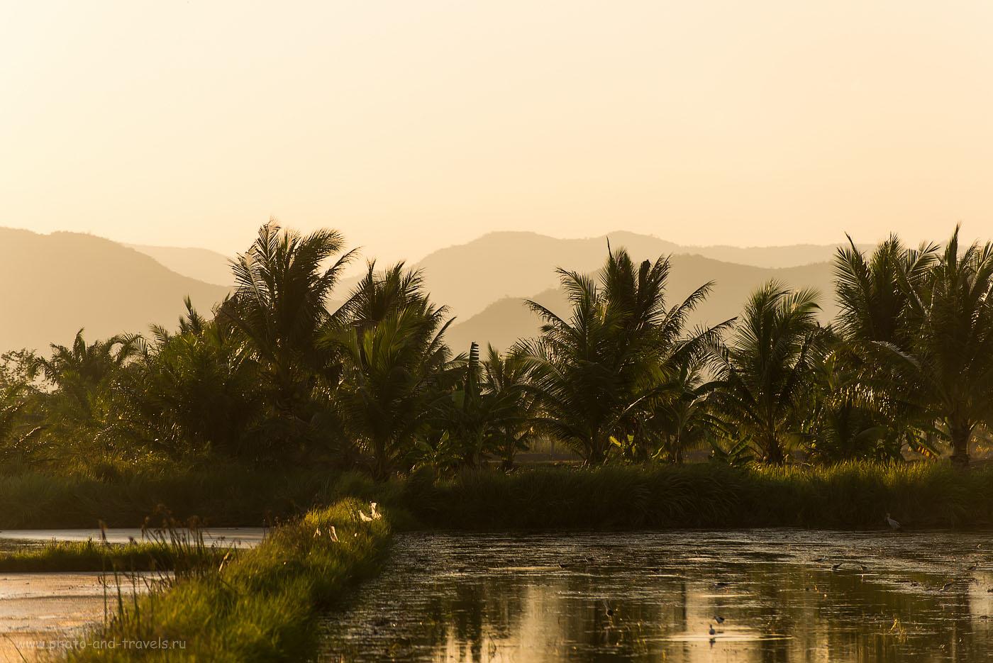 Фото 3. Одним прекрасным вечером в окрестностях Хуахина. Отзывы о поездке по Таиланду на машине (200, 180, 5.0, 1/800)