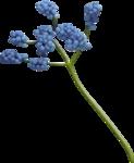 """Скрап набор """"цветочная улыбка"""" 0_740e0_5b0d41f5_S"""