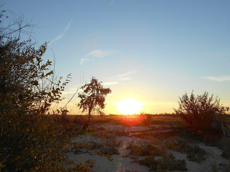 Восход ... DSCN0870.JPG