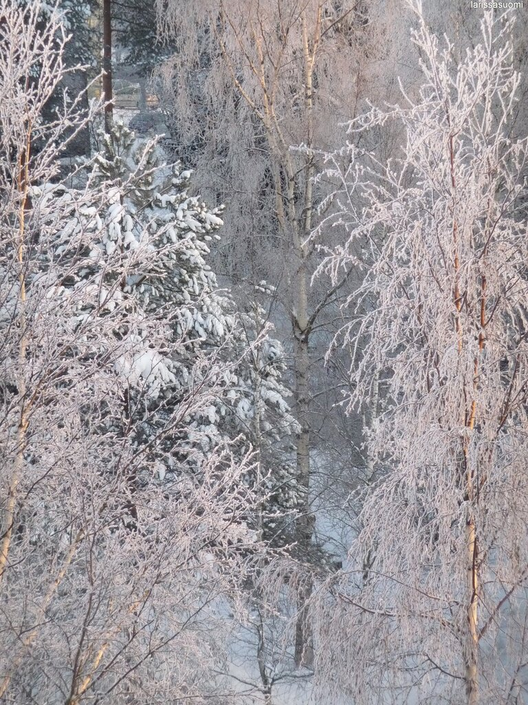 23.12.2010 - Вид из окна утром.
