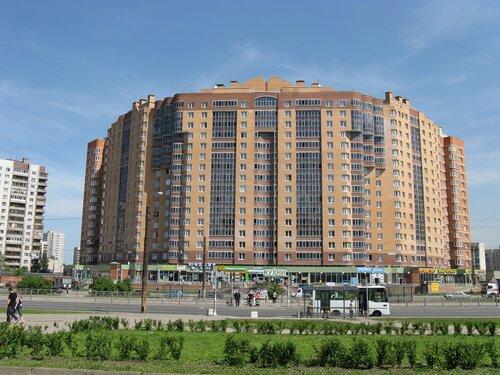 Бухарестская ул. 118к1