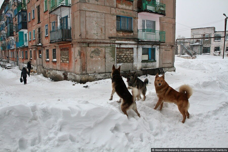 http://img-fotki.yandex.ru/get/5902/lexandre.103/0_40d48_b31019cc_XXL