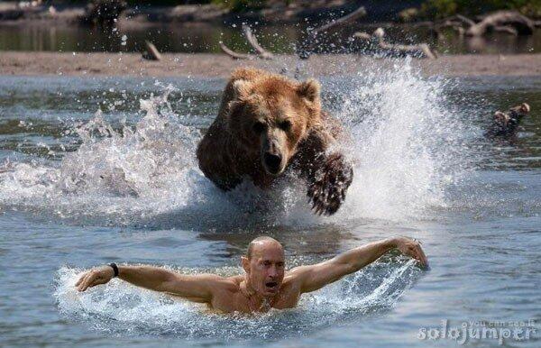 Фотожабы на Путина Putin funny pic